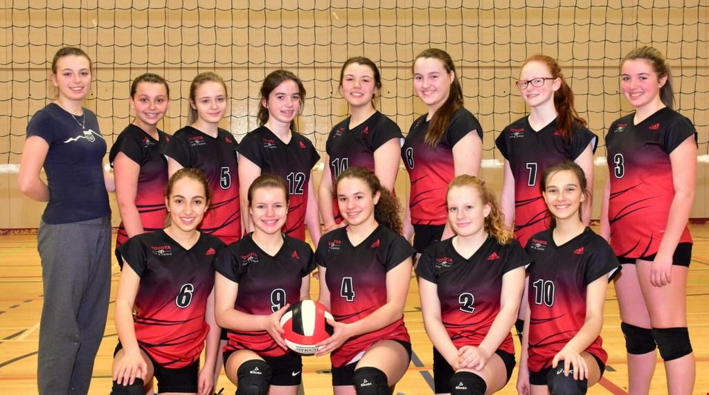 Volleyball: un nouveau club de volleyball pancharlevoisien est créé