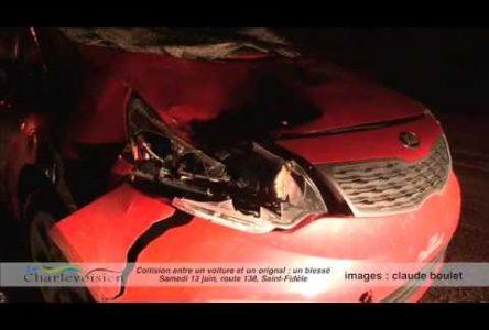 Un automobiliste blessé dans une collision avec un orignal
