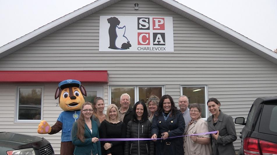 Un nouveau refuge pour les animaux de la SPCA Charlevoix ! (vidéo)