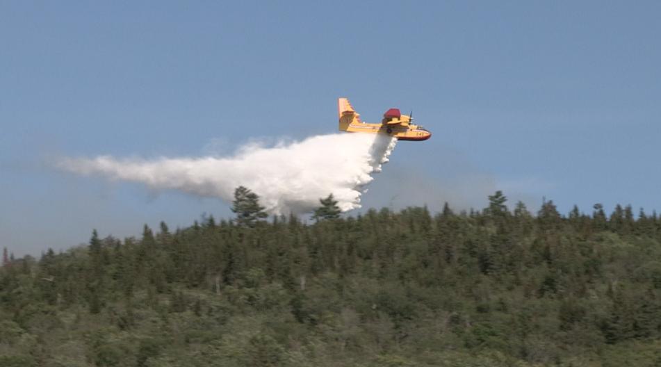 Feu de forêt à Baie-Sainte-Catherine : la SOPFEU sur les lieux
