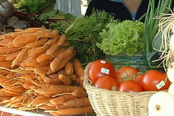 Le temps des récoltes au marché public de La Malbaie