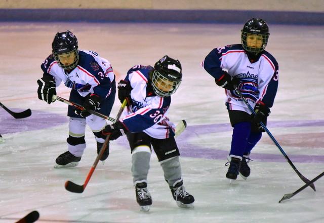 C'est le 5 ième tournoi novice de Baie-Saint-Paul en fin de semaine