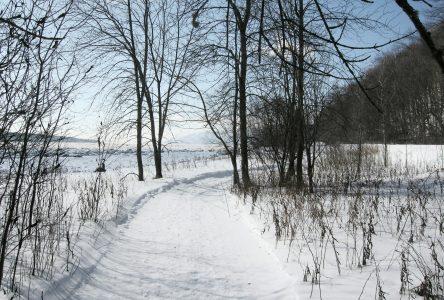 Le sentier de LaPointe-de-l'Anse vous attend