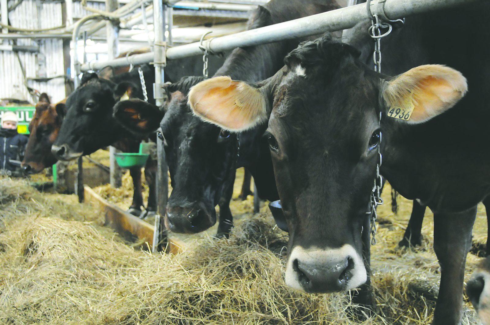 Le Bloc québécois demande de considérer les agriculteurs