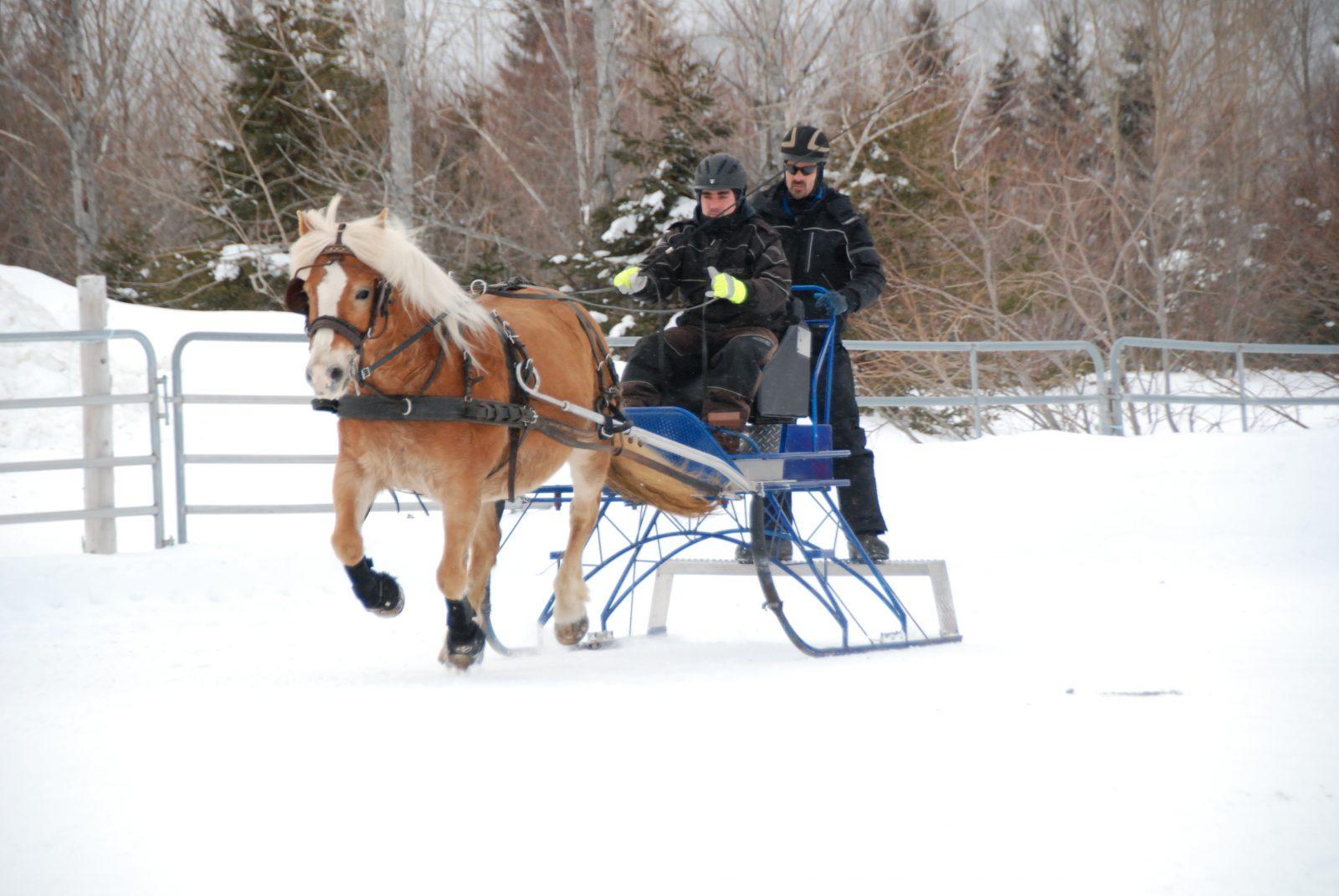 Derby de Baie-Sainte-Catherine: un évènement méconnu