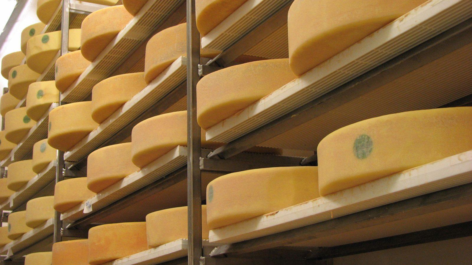 Trois fromages d'ici nommés aux Prix Caseus