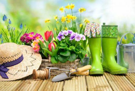 Cours de jardinage écoresponsable à Baie-Saint-Paul