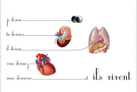 Don d'organes: qui ne dit mot consent