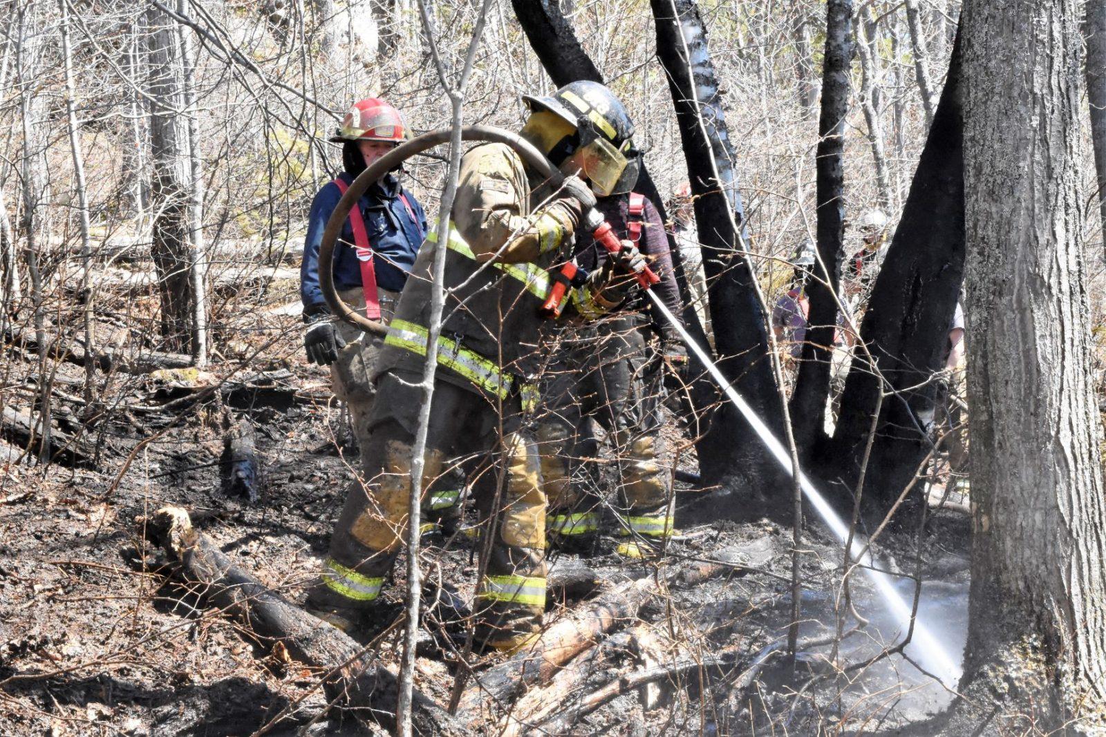 Feu de forêt à Baie-Saint-Paul: « il y avait des flammes partout, plus grandes qu'un homme ».