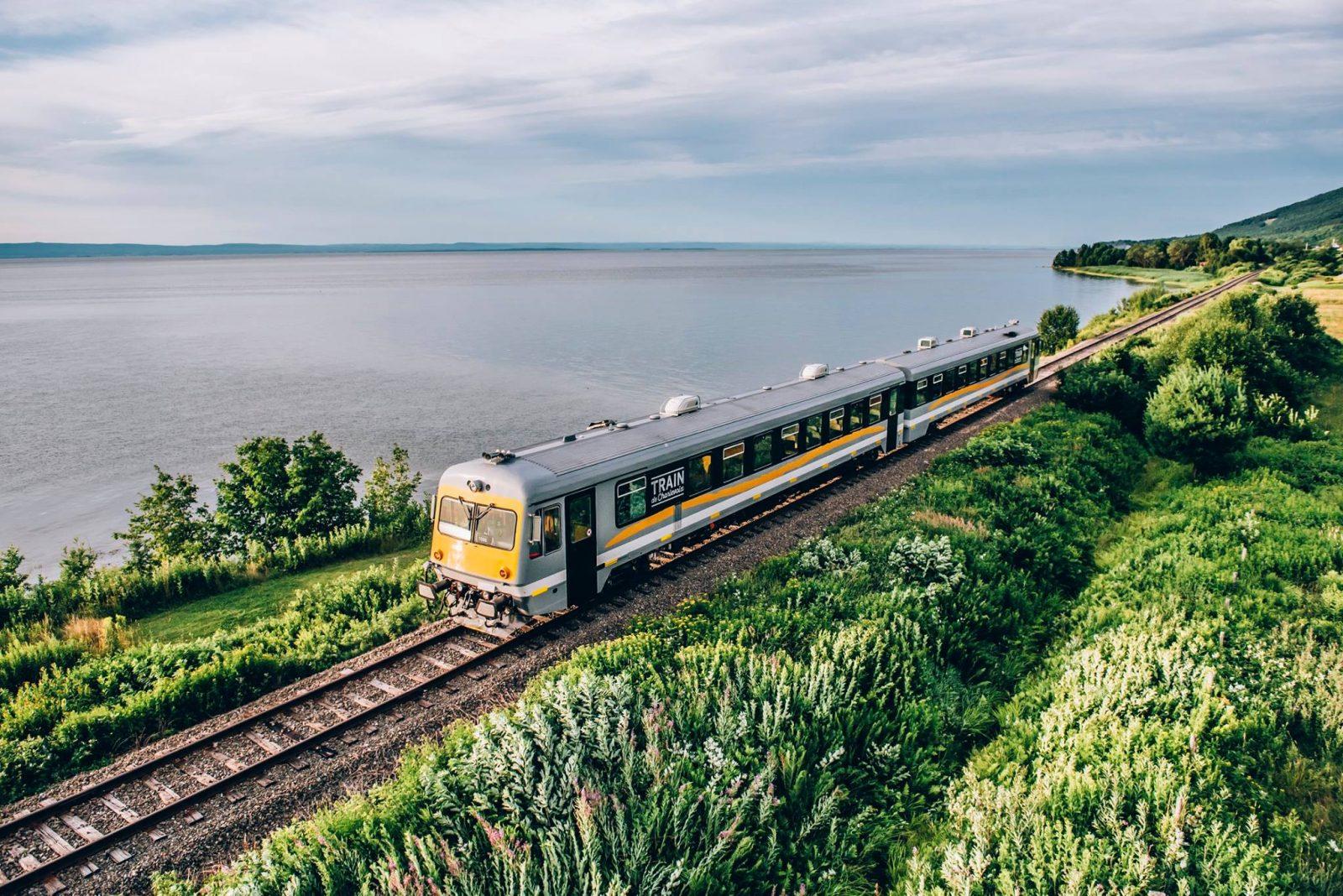 La faune et la flore, vues du train