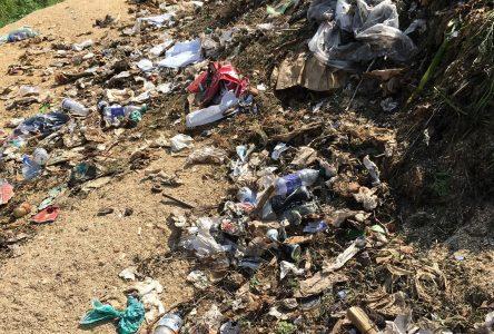 B-a-ba du compostage domestique