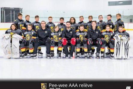 Deux matchs de hockey d'exception à Clermont en septembre