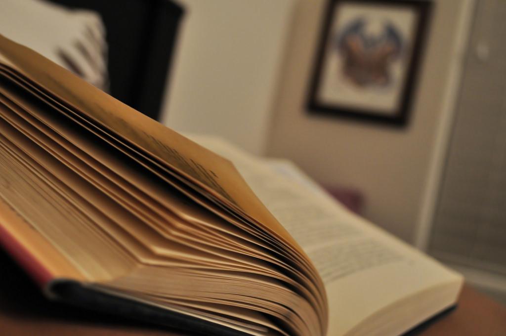 La grande vente de livre se poursuit à la bibliothèque Laure-Conan