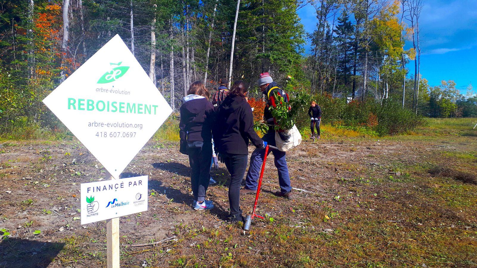 340 arbres plantés à La Malbaie
