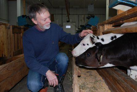 Jean-Robert Audet se relance dans le veau