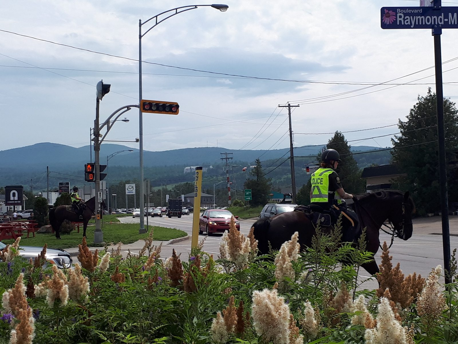 Les patrouilleurs équestres ont émis 15 constats d'infractions