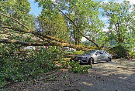 (PHOTOS) La tempête Isaias se déchaîne sur Charlevoix