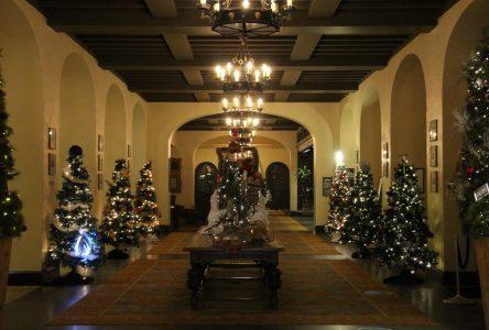 Les arbres de Noël pour le bien-être des enfants reviennent au Fairmont
