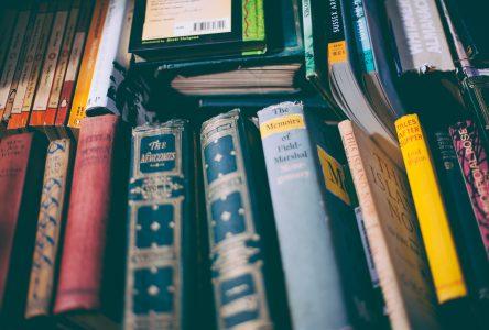 De Winnetou aux auteurs canadiens : les premières nations en littérature