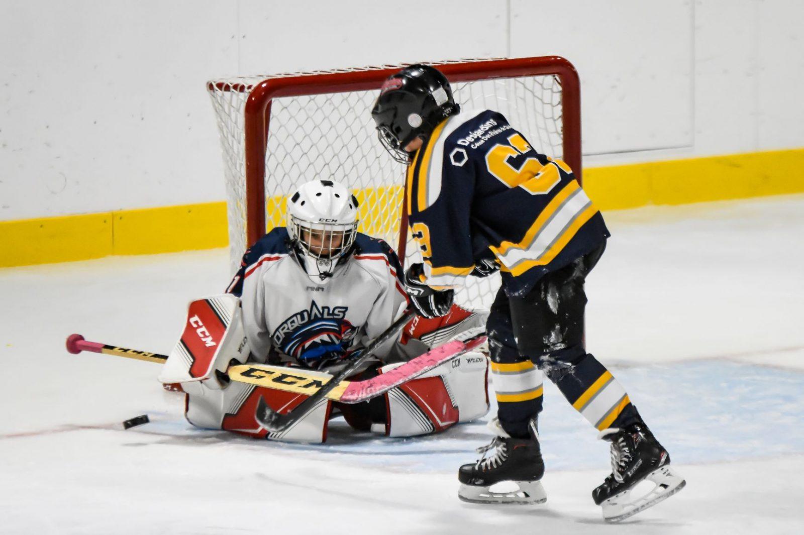 Baie-Saint-Paul annule deux tournois de hockey